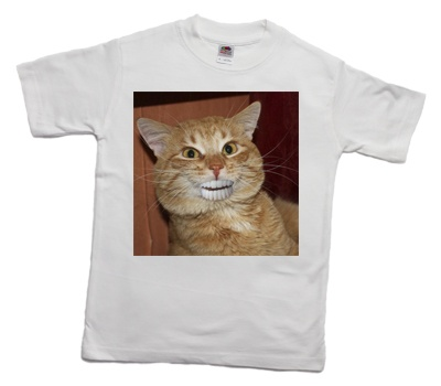 how_to_print_a_funny_cat_on_a_t-shirt_1_400