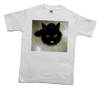 how_to_print_a_funny_cat_on_a_t-shirt_3_400