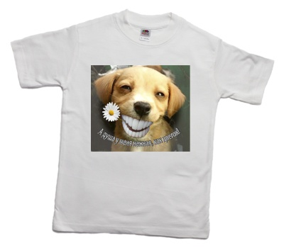 how_to_print_a_funny_smile_dog_on_a_t-shirt_1_400