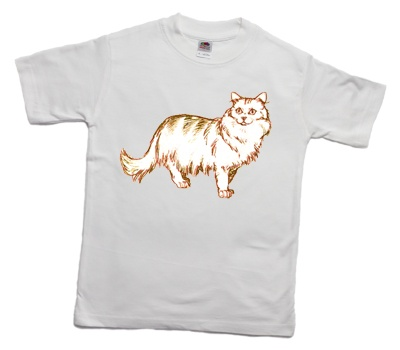how_to_print_a_long-haired_parti-coloured_cat_on_a_t-shirt_400
